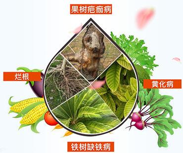 硫酸亚铁肥料的作用